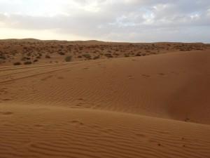 Wüste Al WAsil
