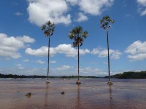 Lagune Canaima