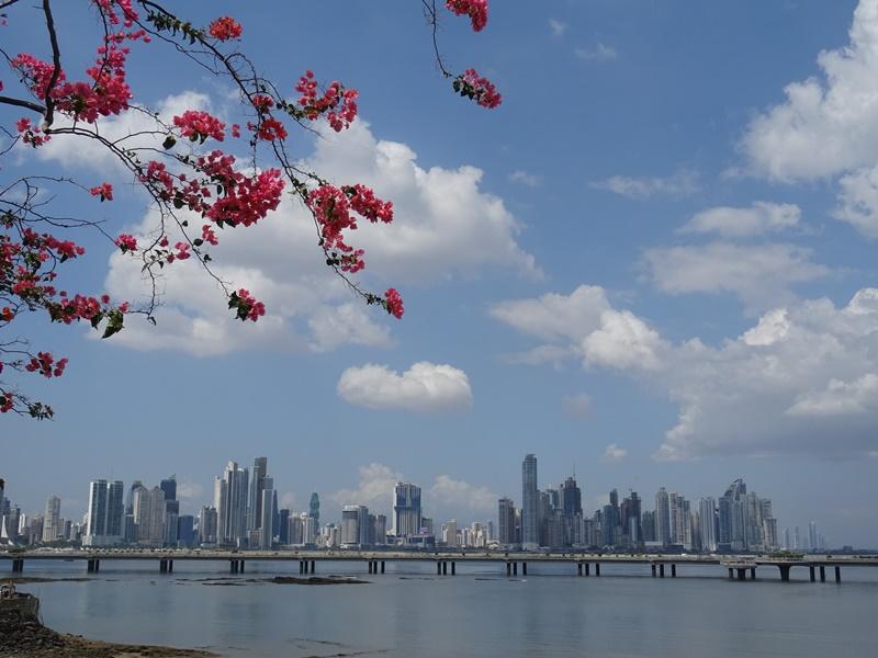 Panama City Skyline
